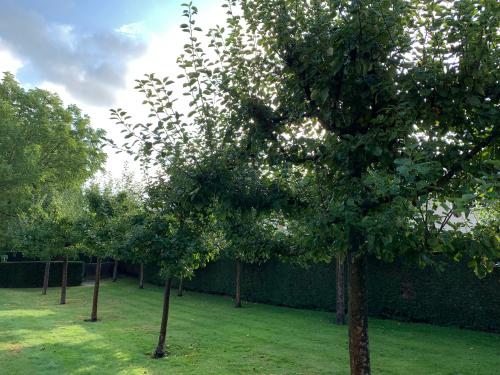 Appelboomgaard in De Bijbelse Tuin Hoofddorp